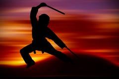 Martial Arts training Royalty Free Stock Image