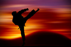 Martial Arts training. With sunset background Royalty Free Stock Image