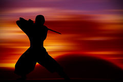 Martial Arts training Stock Images