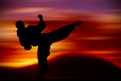 Martial Arts training. With sunset background Royalty Free Stock Images
