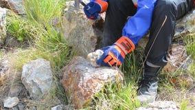 Martilleo con un martillo de los geólogos en piedra almacen de video