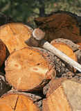 Martillo de trineo en la pila de madera Imagen de archivo libre de regalías
