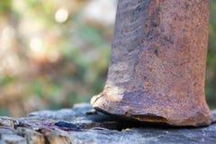 Martillo oxidado del metal en un de madera Imágenes de archivo libres de regalías