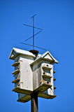Martin Birdhouse Royalty Free Stock Image