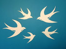 Martin birds cut from paper. Royalty Free Stock Images