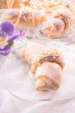 Martin croissant Royalty Free Stock Image