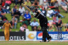 Martin Guptill Royalty Free Stock Photos