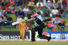 Martin Guptill Stock Photos