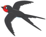 Martin. House martin flying, vector illustration on a white background stock illustration