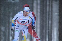 Martin Johansson - cross country. Martin Johansson from Sweden in men 15 km race within cross country world cup held on Nove Mesto na Morave on 23.1.2015 Stock Photography