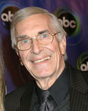 Martin Landau Royalty Free Stock Images