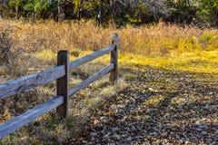 Martin-Naturpark im Fall stockbild