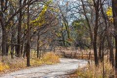 Martin natury park w spadku obraz stock