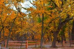 Martin Park, de Stad van NW Oklahoma stock foto