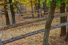 Martin Park, de Stad van NW Oklahoma royalty-vrije stock afbeeldingen