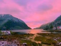 Martin river estuary stock photo