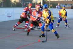 Martin Smid - hockey de la bola Foto de archivo