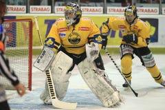 Martin Volke - Verva Litvinov goalkeeper Royalty Free Stock Image
