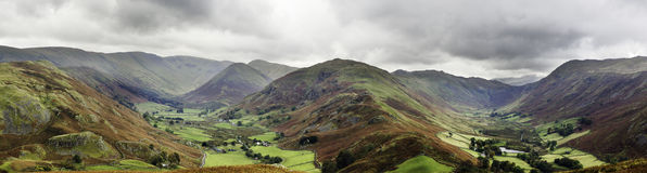Martindale common Royalty Free Stock Images