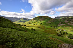 Martindale Common Royalty Free Stock Photography