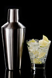 Martini κοκτέιλ και δονητής Στοκ Φωτογραφία