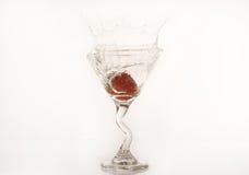 martini φράουλα Στοκ Εικόνες