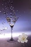 martini Fotografia Stock
