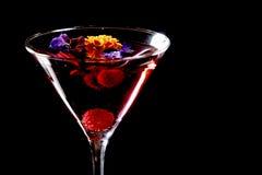 Martini imagens de stock royalty free