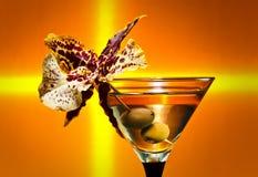 martini Fotografía de archivo