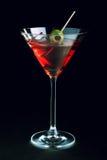 martini стоковое фото rf