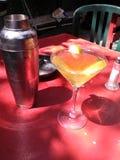 martini Royalty-vrije Stock Foto