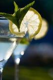 Martini Royalty Free Stock Photos