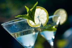 Martini Royalty Free Stock Photo