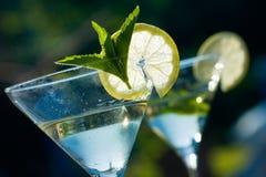 martini Royaltyfri Foto