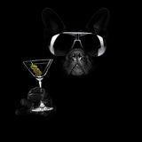 Martini cocktail dog royalty free stock photography