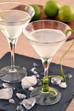Martini cocktail. Royalty Free Stock Images