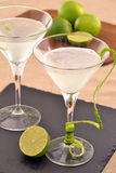 Martini cocktail. Stock Image