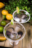 Martini coctail composition with fruits Royalty Free Stock Photo