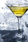 Martini con hielo Foto de archivo libre de regalías