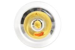Martini de arriba Imágenes de archivo libres de regalías