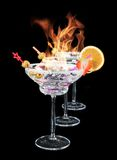 Martini drinks Royalty Free Stock Photography