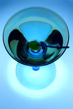 Martini fresco fotografia de stock royalty free