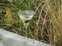 Martini-Glas auf den Gebieten Lizenzfreies Stockfoto
