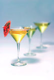 Martini glass Stock Images