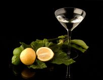 Martini Glass with lemon branch Royalty Free Stock Image