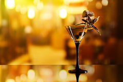 Martini. Green olives and orchid flower on mirror table in bar royalty free stock image