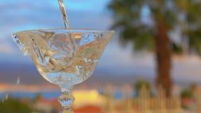 Martini hälls in i ett exponeringsglas på en bakgrund av palmträd lager videofilmer