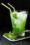 Martini koktajl z zieloną herbatą, mennicą i lodem, Obrazy Stock