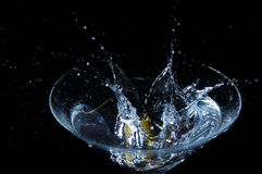 martini ' last splash ' Obraz Royalty Free