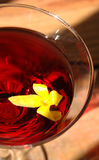 martini red Arkivfoton